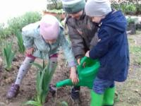 2 младшая группа участвовала в посадке растений к 75-летию освобождения Алушты от фашизма